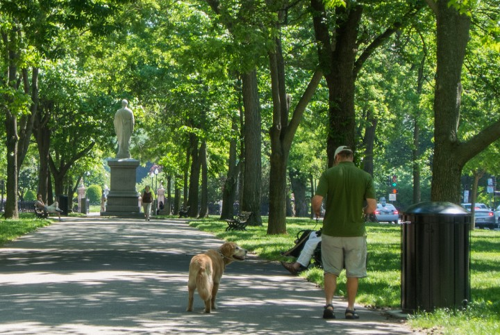 Boston Commons and Public Garden