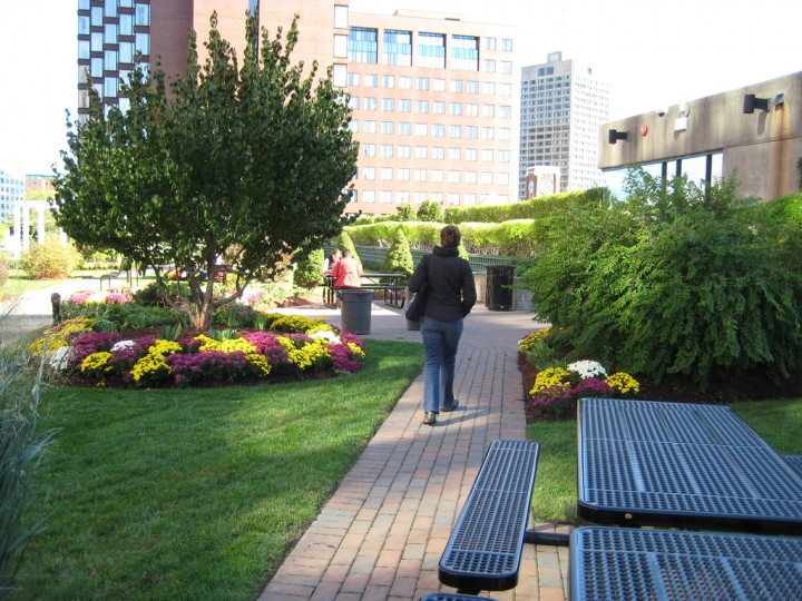 Cambridge Center Roof Garden
