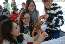 回顾:龙虾君观光团之找呀找呀找龙虾