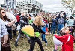 2014世界枕头大战日:波士顿战区4月5日开战